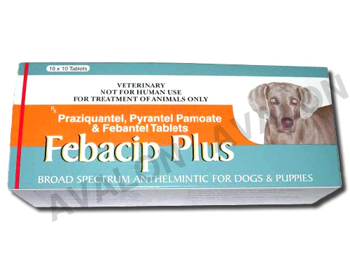 Febacip Plus